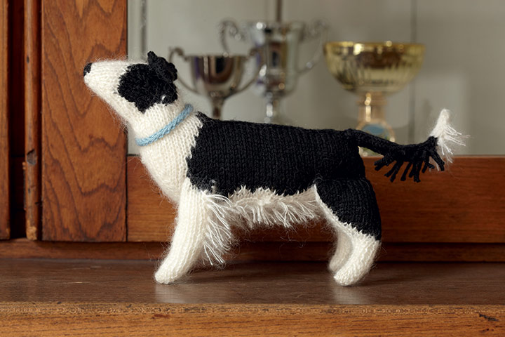 Knitting Pattern For Border Collie Dog : Knitting Patterns for Dogs, Knitting for Pets   Gifts shop blog