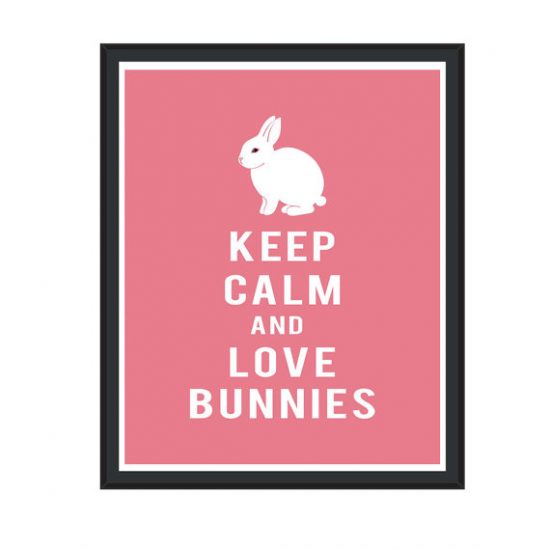 keep calm and love bunnies poster